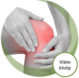 viem_khop